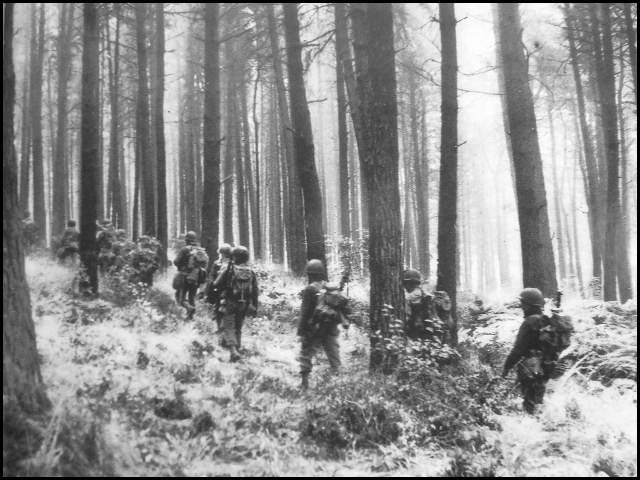 Infantry men walk through the Hurtgen Forest