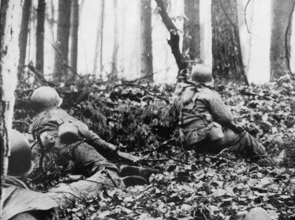 Infantry fighting in the Hurtgen Forest