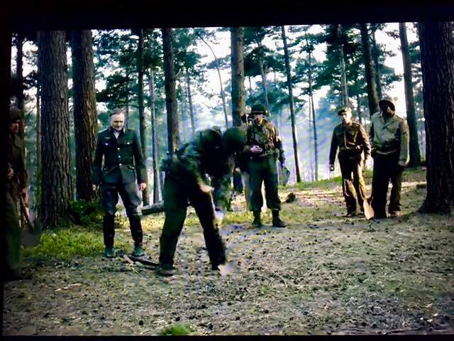 The Crown Forest Digging Scene